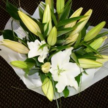 Scented Oriental Lilies